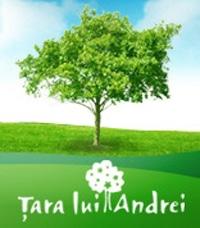 TaraluiAndrei_1